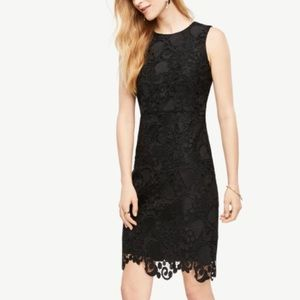 Ann Taylor black lace embroidered sheath dress